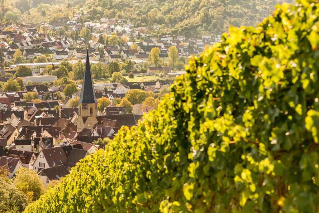 Blick vom Weinberg auf Remshalden-Geradstetten