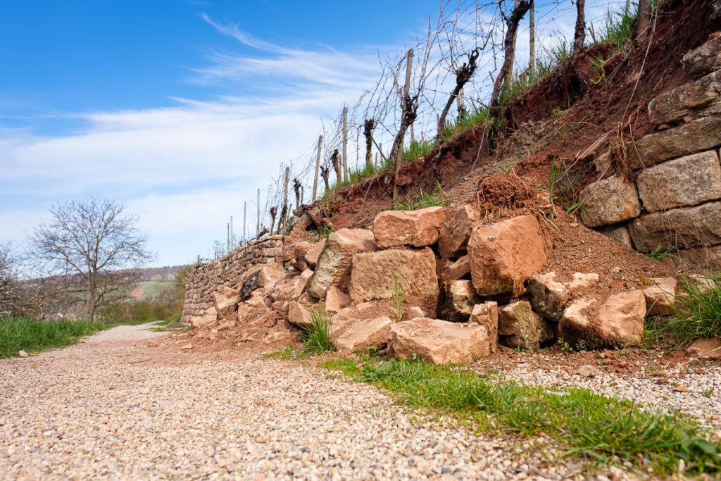 Weinberg mit beschädigtger Mauer