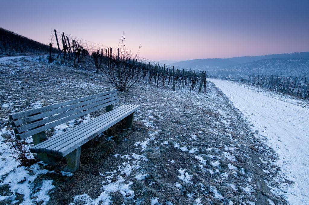 Holzbank in einem Weinberg im Winter