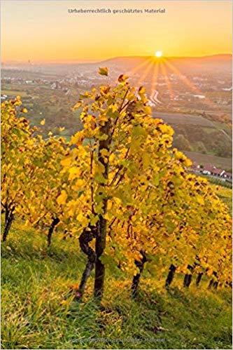 Notizbuch Sonnenuntergang im Herbst Weinberg