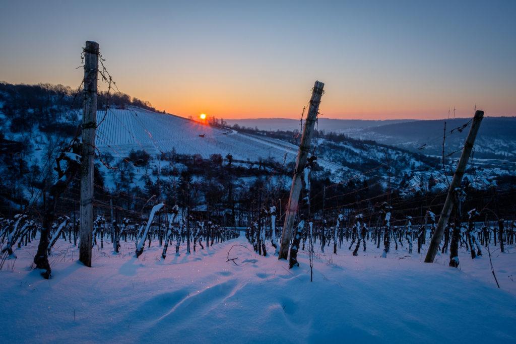 Wein im Remstal - Winter